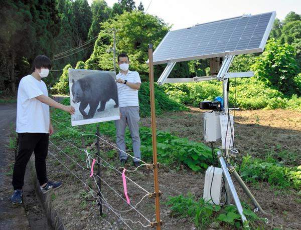 設計者在用熊的照片測試傳感器。 (圖片來源:日本《朝日新聞》網站)