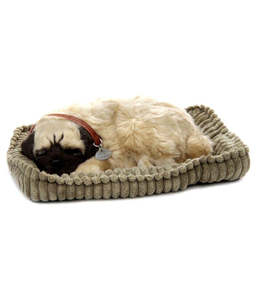 Perfect Petzzz Pug Buy Perfect Petzzz Pug Online At Low