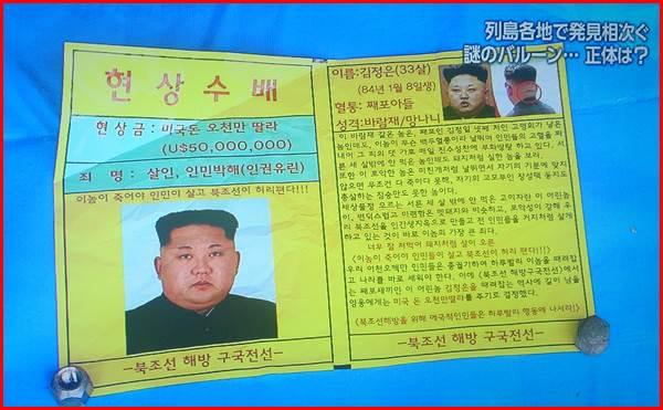謎のバルーン 反北朝鮮ビラ