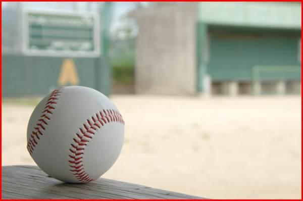 野球 甲子園 ボール