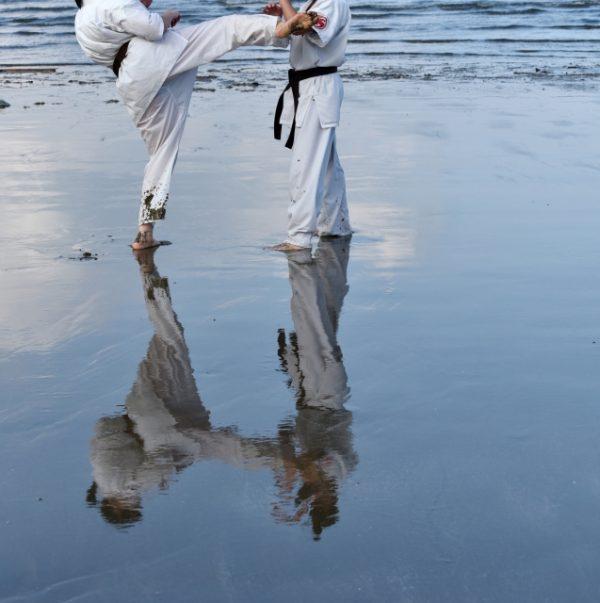 空手 格闘技