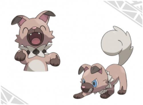 Dettagli sui Nuovi Pokémon 12