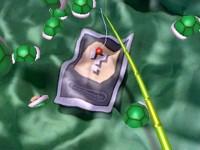 ar card on green