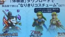 Niente Costumi di Link e Zelda