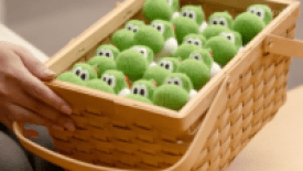Come è Nato Yoshi's Woolly World