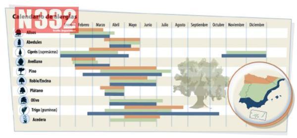 Allergy Calendar Spain