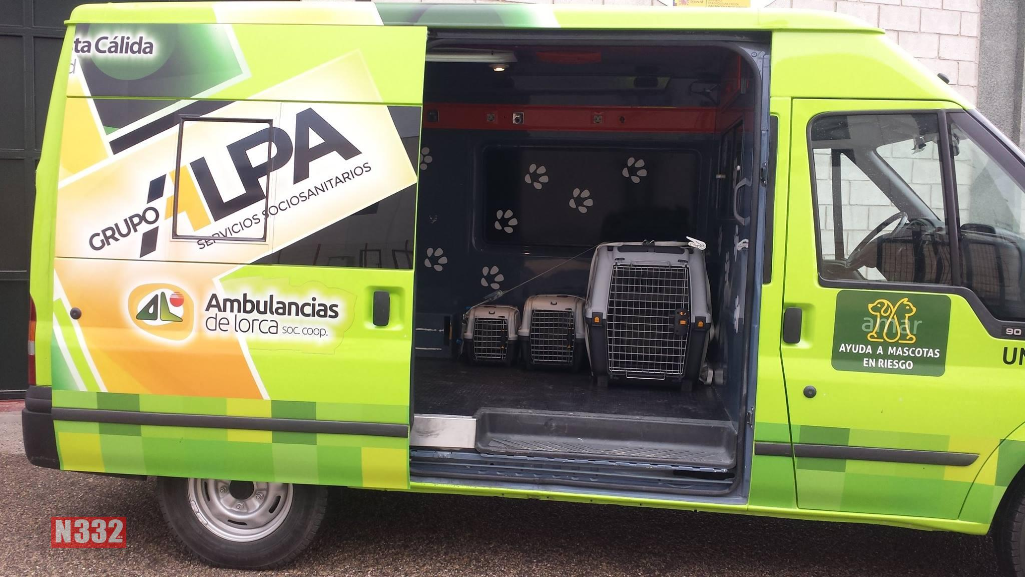 New Service Looks After the Pets of Injured Owners