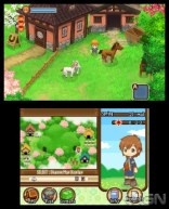 harvest_moon_two_towns-6
