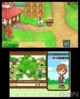 harvest_moon_two_towns-8