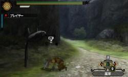 monster_hunter_tri_g_s-17