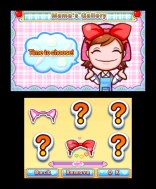 Cooking Mama 4 Accessories