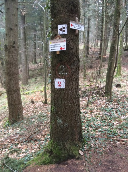 SOTA FL/VO-096 Schlosswald