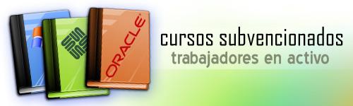 Cursos subvencionados online para trabajadores en activo de programación y BBDD