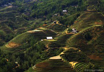 Sapa Landscapes