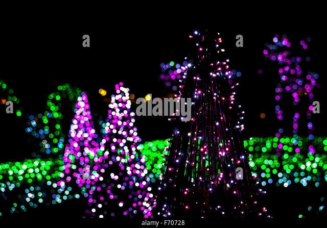 Tree Lighting Festival Stock Photos Amp Tree Lighting