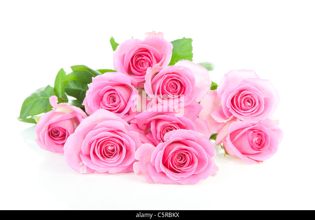 Pile Pink Roses Stock Photos Amp Pile Pink Roses Stock