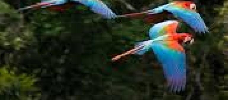 интересные города европы
