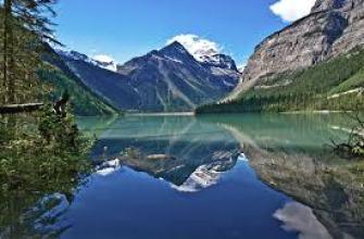 в чем различие между кроликом и зайцем