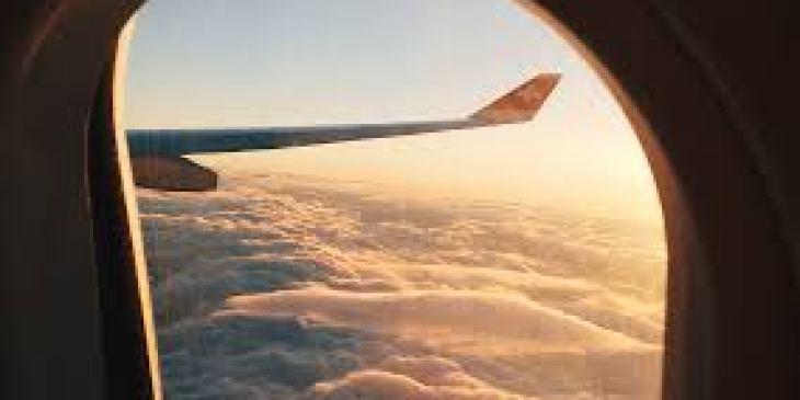 капуста брокколи полезные свойства, рецепты вкусных блюд из капусты брокколи