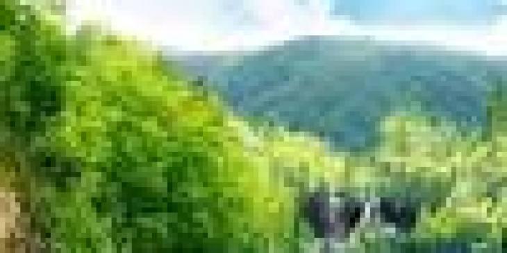 знакомства через интернет, знакомства по интернету