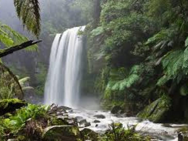как заставить любить человека, как заставить любить себя человека