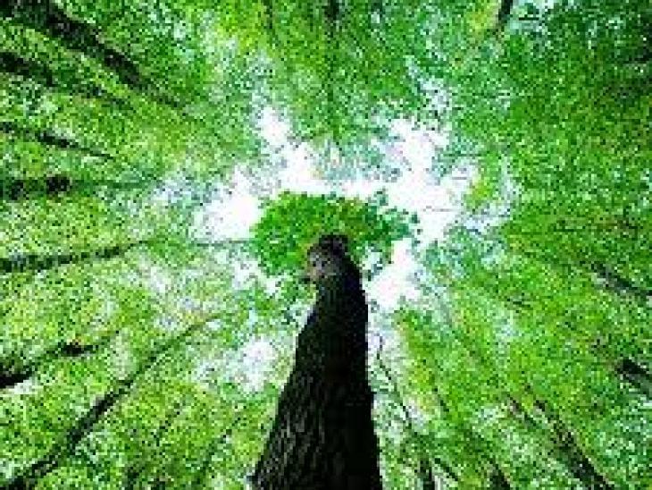 Какой подарок выбрать мужу