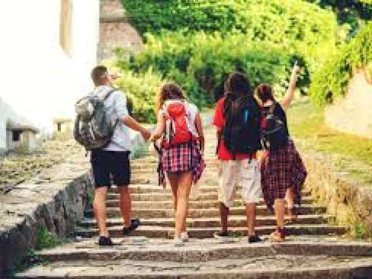 Жиры в питании: польза или вред