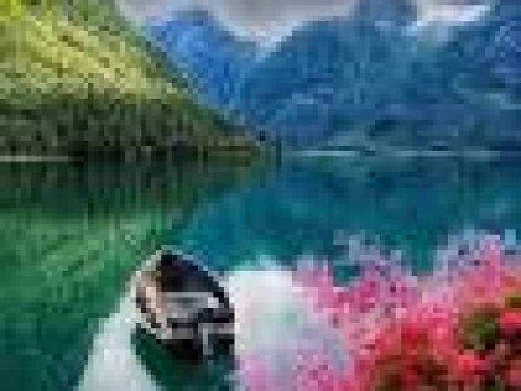 зеленый чай с молоком польза