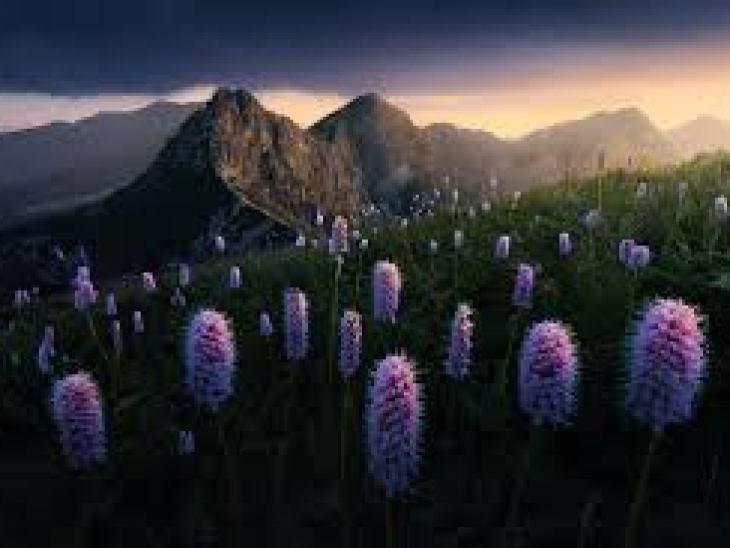 правильная уборка квартиры, как правильно делать уборку в квартире