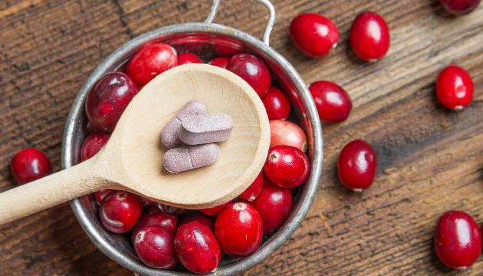 клюква польза и вред для здоровья, полезные свойства клюквы для человека