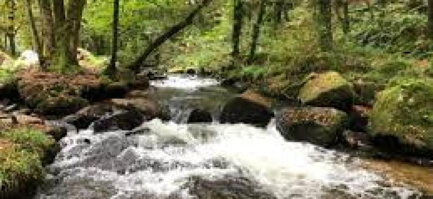 как развить в себе уверенность