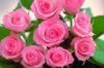что содержит банан, полезные свойства банана для организма