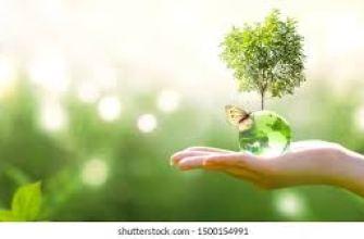 сколько человек в день должен выпивать воды, для похудения