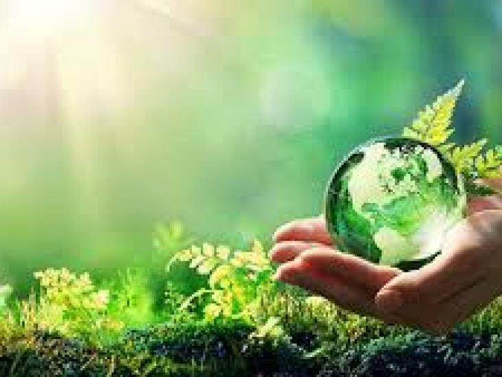 чай черный байховый, зеленый байховый чай