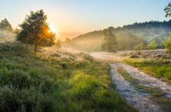 пора выходить замуж