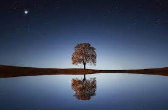 как мужчина привлекает внимание женщины, на работе