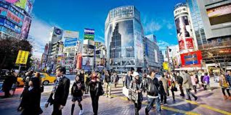 ромашка чай свойства, польза, противопоказания
