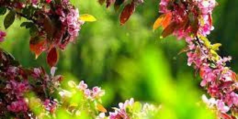 как разорвать отношения, с мужчиной, с партнером, с женщиной