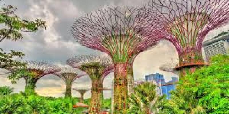 что можно подарить родителям, папе, маме