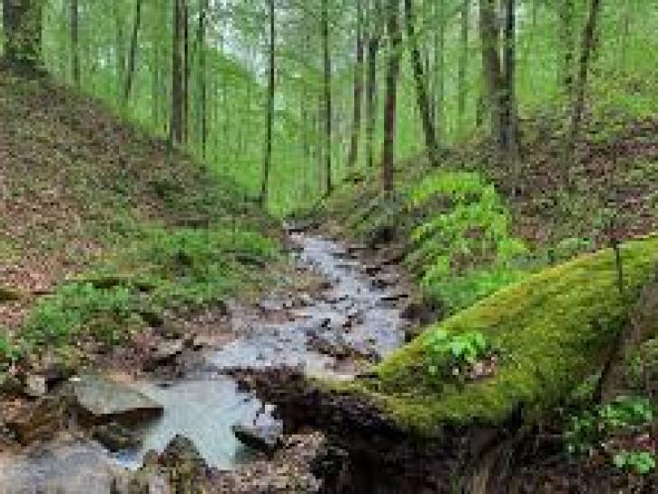 Как хранить драгоценности: энциклопедия ухода за камнями