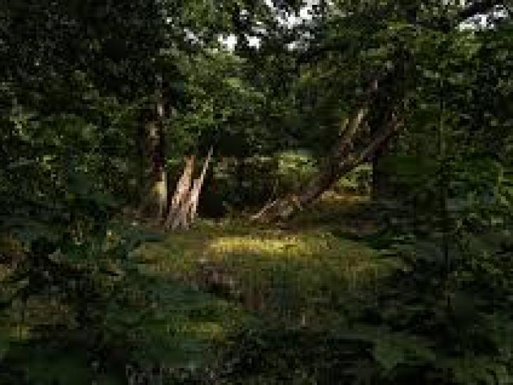 нэцке фигурки, япония, брелок, дерево