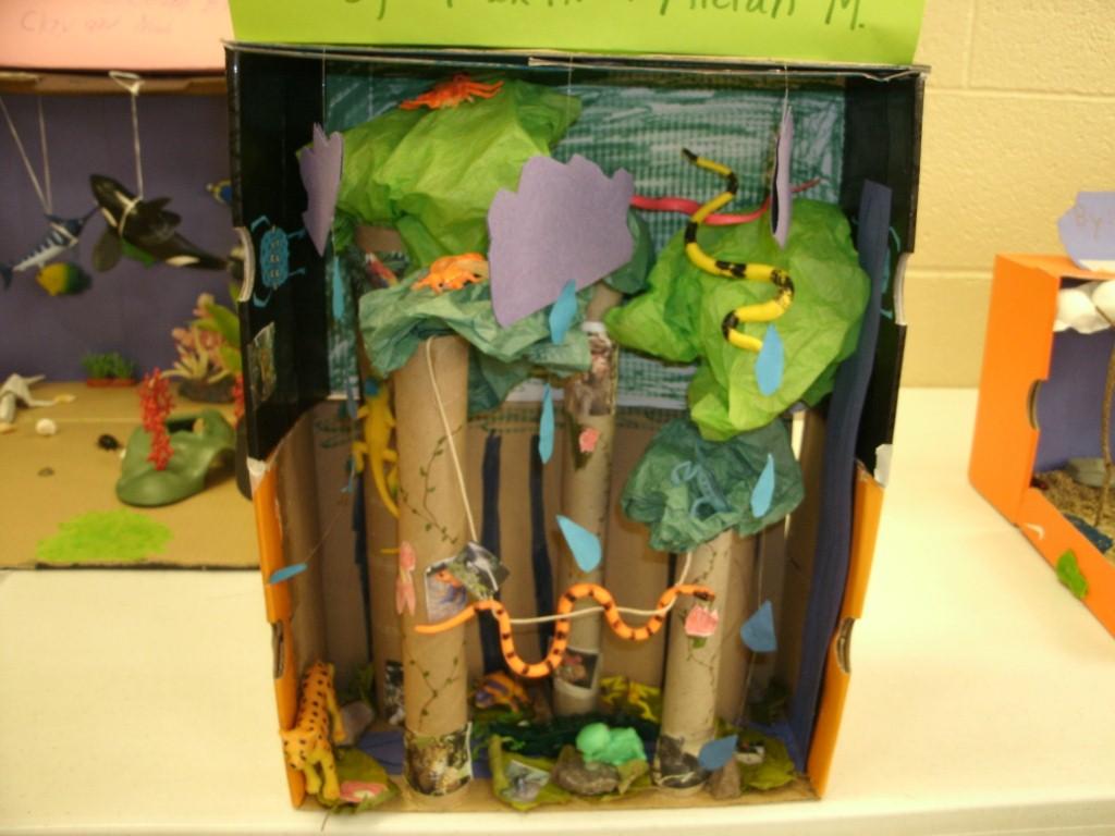 4th Grade Ecosystems