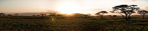 Tanzania-Serengeti_National_Park_2014_[Panorama]-DSC_5686_DSC_5693-8_images