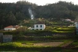 2016-02-08-13-Madeira-DSC_1961