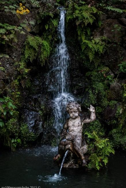 2016-02-08-13-Madeira-DSC_2163