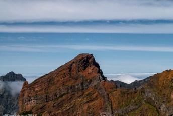 2016-02-08-13-Madeira-DSC_2379