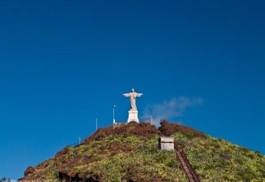 2016-02-08-13-Madeira-DSC_2550