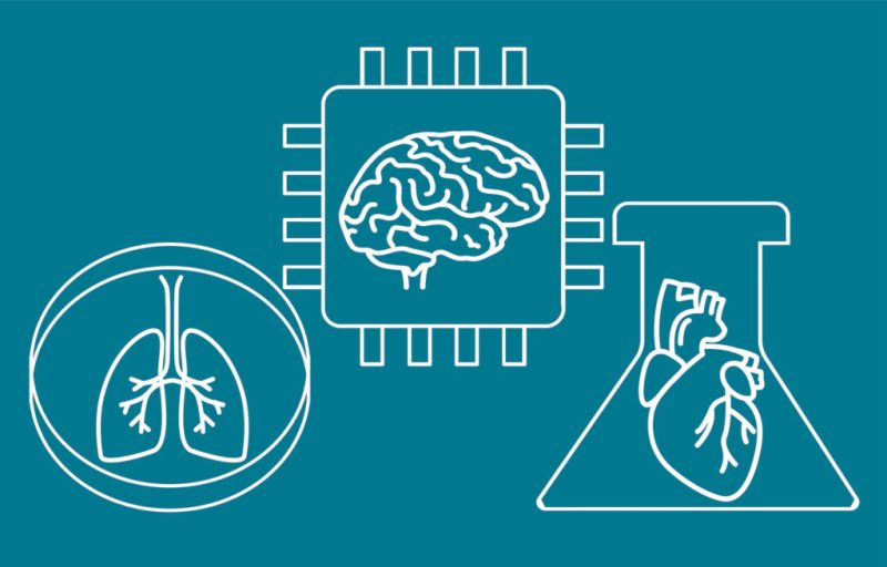 organs-on-chips, in vitro, microphysiological systems