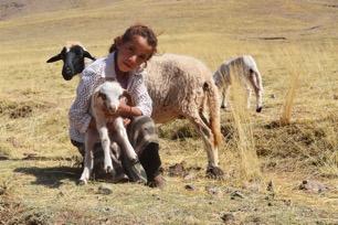 Een Berbermeisje hoedt de schapen
