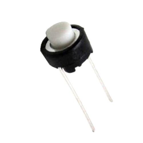 push switch or push button or momentary switch